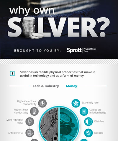 Why Own Silver